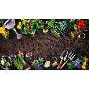 Είδη κήπου - outdoor (65)